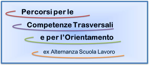 Risultato immagini per Linee guida dei percorsi per le competenze trasversali e per l'orientamento